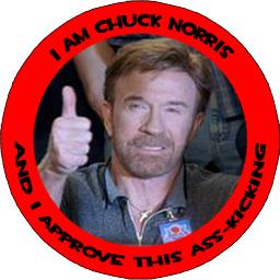 chuck-norris-assk