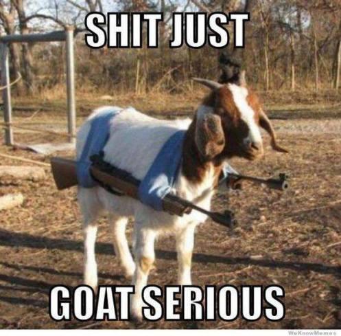 goatserious