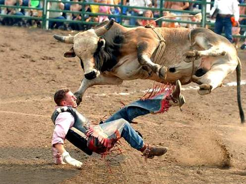 pro-bull-riding-crash